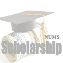 nums mbbs bds entry test 2020 answer keys